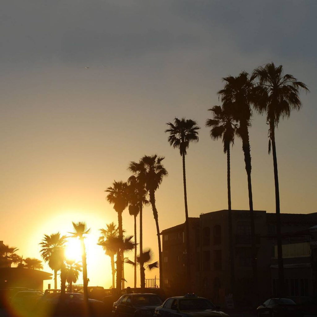 California Feeling Palm Trees Sunset and the smell of thehellip